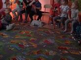 Dzieci w przedszkolu 294