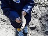 Dzieci w przedszkolu 266
